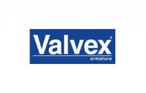 Usługi doradczo – szkoleniowe dla firmy Valvex